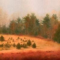 #89 Stanley Farm Assoc. by Grace Cooper