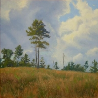 """""""Afternoon Clouds"""" by Lisa Jelleme #81 Woods Without Gile Easement"""