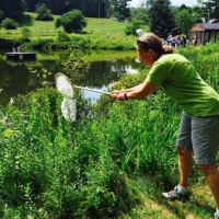 Karen Ebel goes for the catch at the Blitzer Dragonfly event