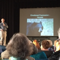 Black Bear Behavior presented by Ben Kilham of the Kilham Bear Center in Lyme