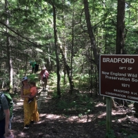 For our final summer event in August, we had a great hike through the Bradford Bog.
