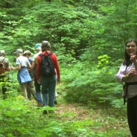 "Hike at ""Wayne's Woods,"" the Garvey property in Goshen"
