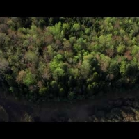 Embedded thumbnail for 2019-Help us Protect the Sawyer Brook Headwaters Property in Grantham