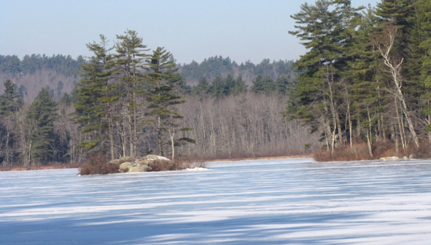 Messer Pond/Town of New London