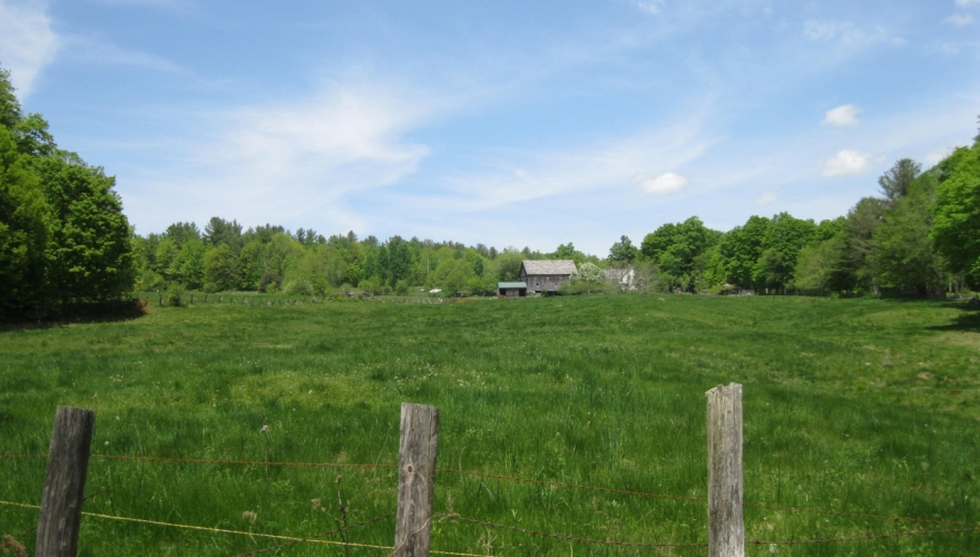 Clayton Nowell Conservation Easement