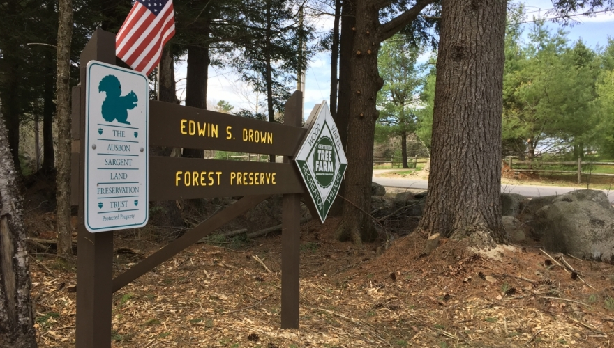 Edwin S. Brown Forest Preserve