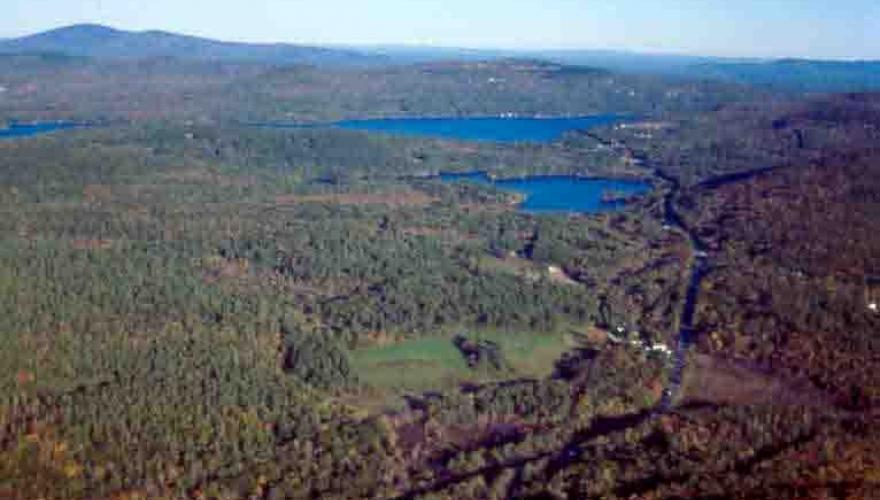 Webb Forest Preserve