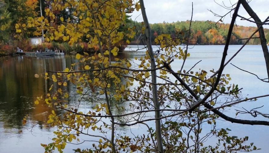 Phillips (Lake)
