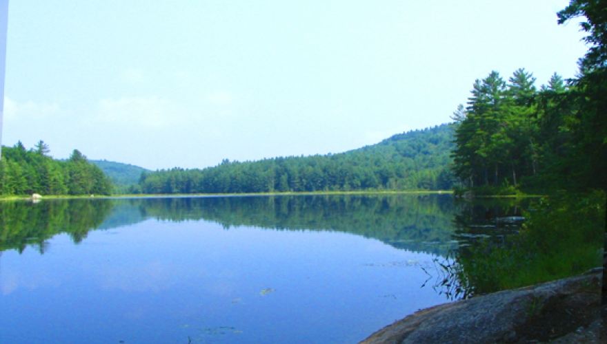 Courser Phase 4 (Trumbull Pond)